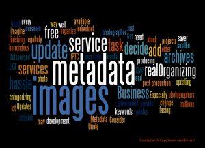 Metadatos y Web